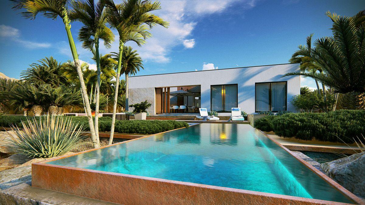 wizualizacje 3d nowoczesnego domu z basenem i palmami