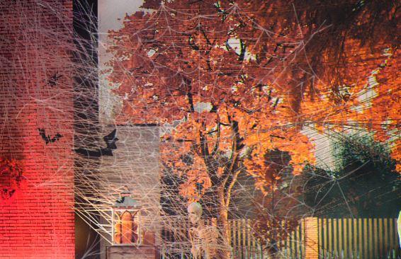 wizualizacje halloween ze szkieletem i pajęczyną